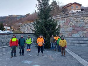 Weihnachtsbaum am Dorfplatz